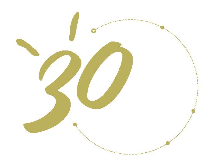Logo 30 ans Access